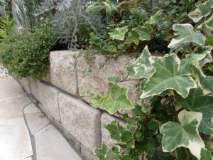 高さのある花壇で、植物を垂らすようにすると やわらかさが出ます