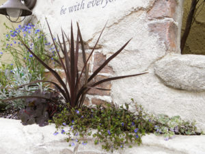 小さな花壇には草花を… 意外とたくさん植えられます