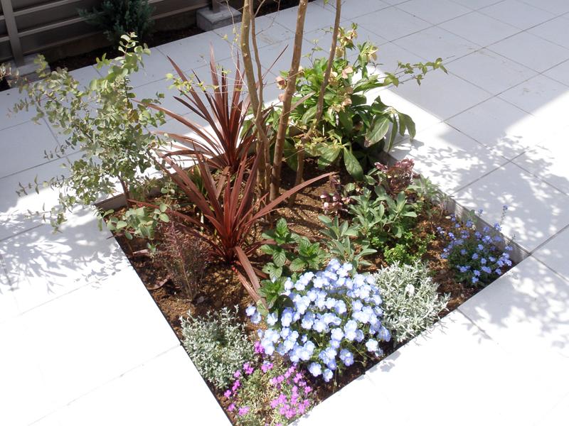 テラスにぽっかり空いた花壇… 見ては非常に面白いですが、施工は意外と手間っ食いです