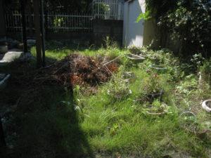 リフォーム前… 雑草や植木がはびこって、ちょっと庭に出たくない感じ
