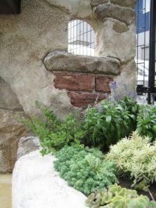 造形と植栽… この雰囲気 大好きです