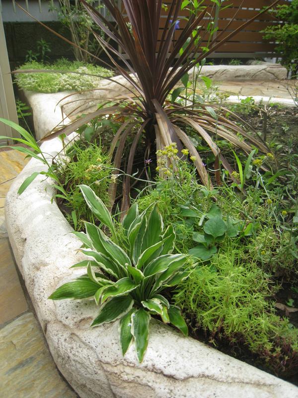 モルタル造形の花壇と草花… ちょっと雑草まじりバージョン