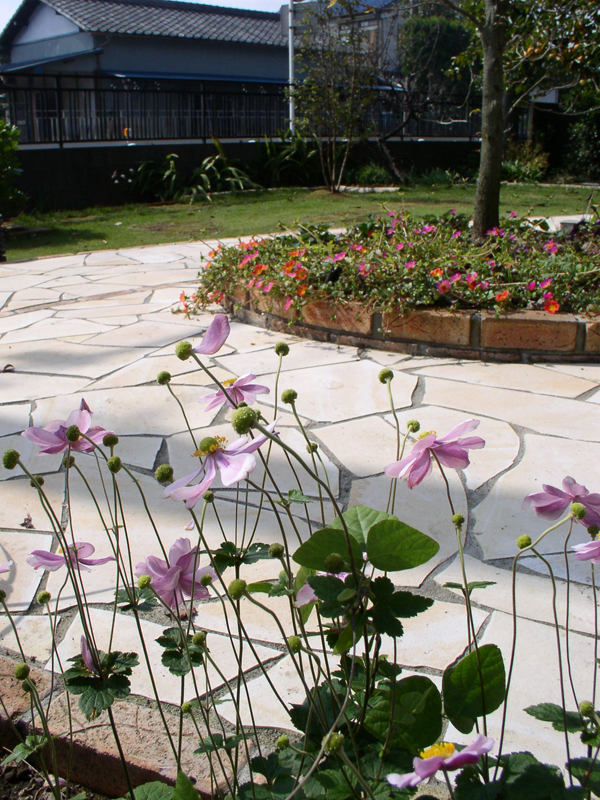 木々草花の色取りが この庭の主役です