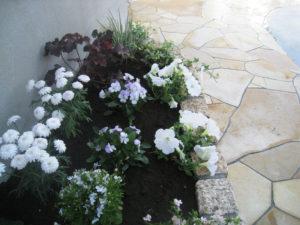 花壇にちょっと草花を… 石の印象がやわらかくなります